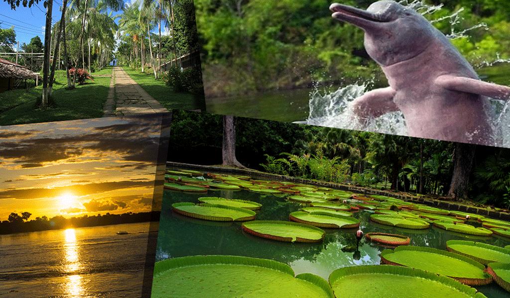 Amazonas con Latam 3N o 4N